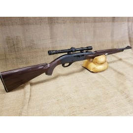 Remington Model 66 Nylon Rifle